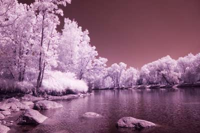 infrared image using a filter